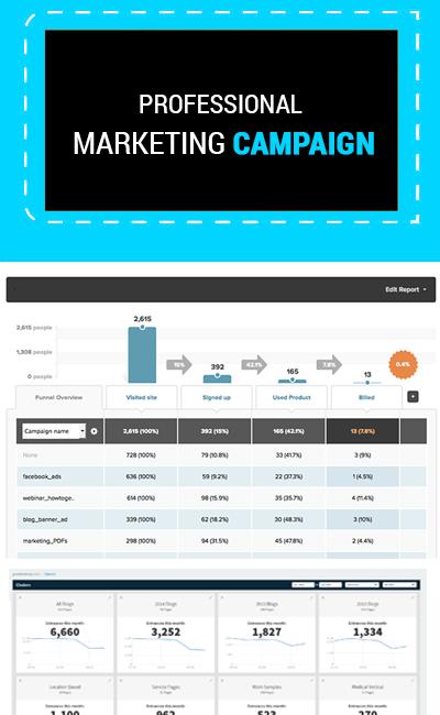 Professional Marketing campaign